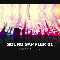 DNR Collaborative Sound Sampler 01