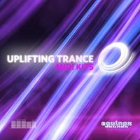 Uplifting Trance MIDI Kits by Equinox Sounds