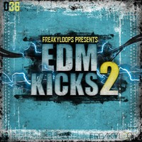 EDM Kicks 2 Drum Samples