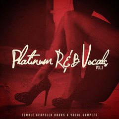Platinum RnB Vocals Vol 1