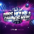 Bass House and Garage Keys Sample Pack by 5Pin Media