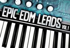 EDM MIDI Loops Files