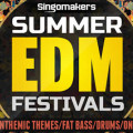 Summer EDM Festivals Sample Pack by Singomakers