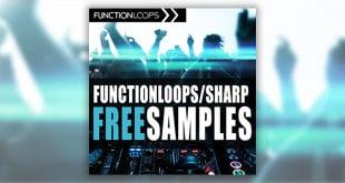 Function Loops Free Samples