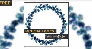 Minimal Free Loops