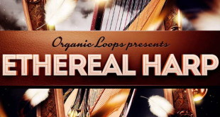 Ethereal Harp Samples Loops