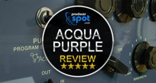 Acustica-Audio Reviews