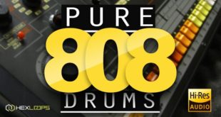 Pure 808 Drum Samples Pack by Hex Loops