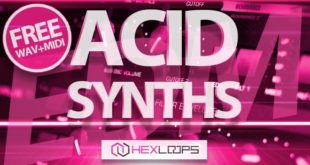 Free ACID Synth Wav Loops