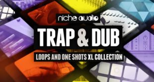 Niche Audio Trap Dub Sample Pack