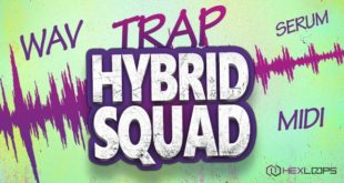 Trap Hybrid Squad Sample Pack