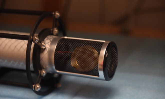 Reference Silver Microphone