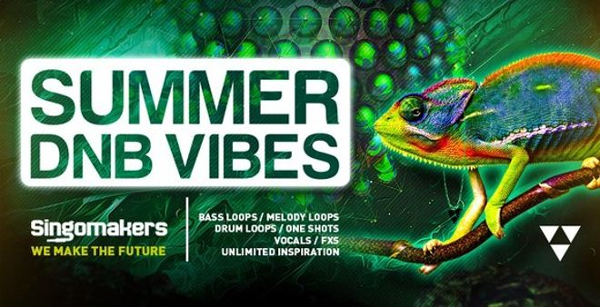 Summer DNB Vibes Loops