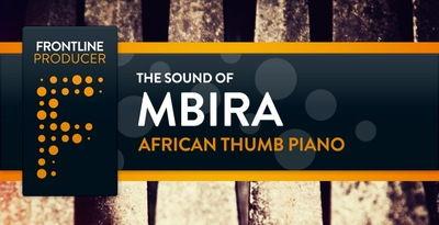 African Thumb Piano