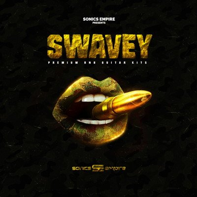 Swavey RnB Guitar Kits Guitar Loops