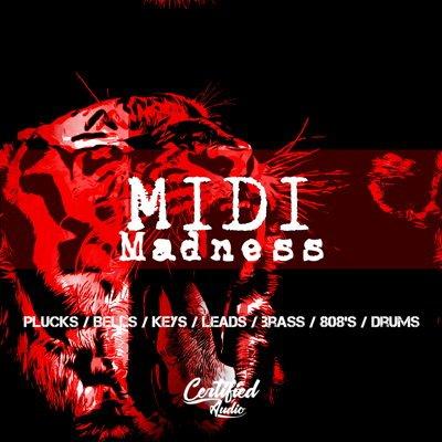 MIDI Madness MIDI Loops MIDI Files MIDI Pack