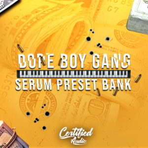 Dope Boy Gang - Serum Preset Bank
