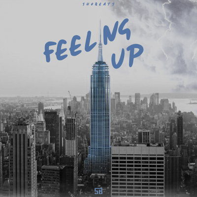 SHOBEATS - FEELING UP - Sample Pack