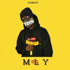 SHOBEATS - MOLLY Trap Beat Kits Sample Pack