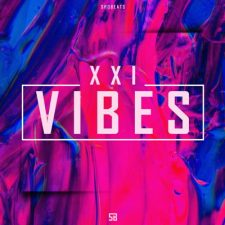 SHOBEATS - XXI VIBES - Lil Skies, Juice WRLD - Beat Kits