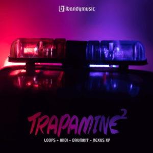 Lbandy Music - Trapamine 2 - Loops, MIDI, Nexus Presets