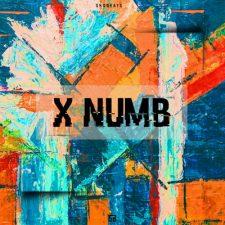 SHOBEATS - X NUMB - TRAP SOUND PACK