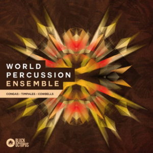 Black Octopus - World Percussion Ensemble