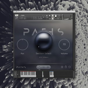 Audiomodern Paths - Kontakt Instrument