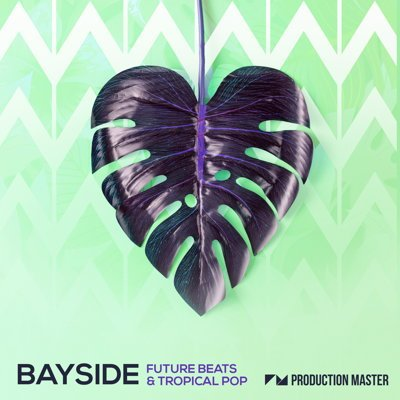 Bayside - Future Beats & Tropical Pop Music Loops