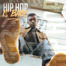 Diginoiz - Hip Hop Is Back - Sample Pack