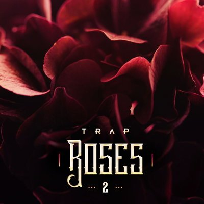 Diginoiz - Trap Roses 2