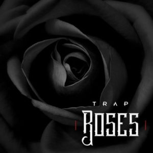 Diginoiz - Trap Roses - Beat Kits