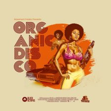 Black Octopus Sound - Organic Disco Sample Pack