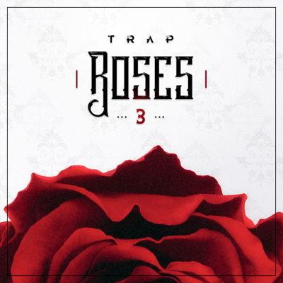 Diginoiz - Trap Roses 3