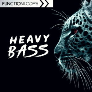 Function Loops - Heavy Bass - WAV, Serum Presets