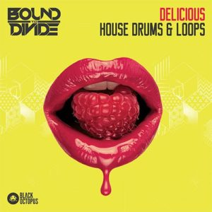 Black Octopus Sound - Delicious House Drums & Loops