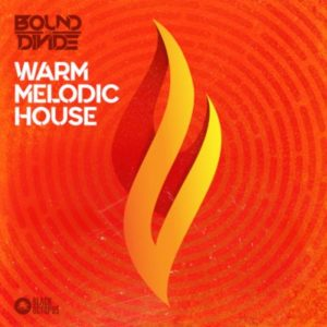 Black Octopus Sound - Warm Melodic House Loops