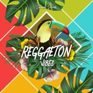 Smemo Sounds - Reggaeton Vibes