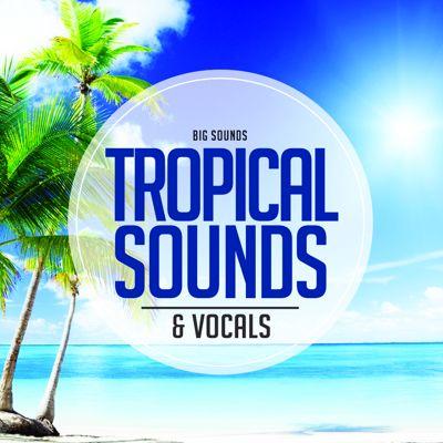 Big Sounds Tropical Sounds and Vocals