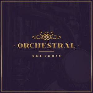 Diginoiz - Orchestral Samples - One Shots
