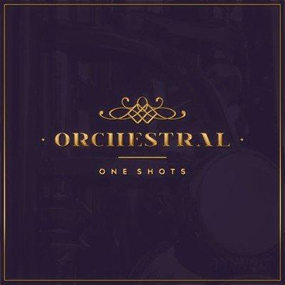 Diginoiz - Orchestral Samples - One Shots