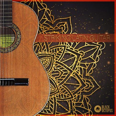 Striking Latin Guitar Loops