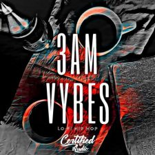 Certified Audio - 3AM Vybes Lo-Fi Hip Hop Samples