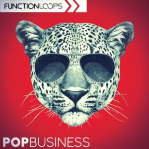 Function Loops - Pop Business - Samples, Loops Pack