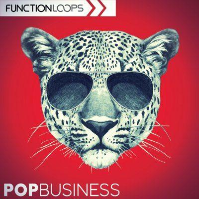 Function Loops - Pop Business - Samples, Loops Pack