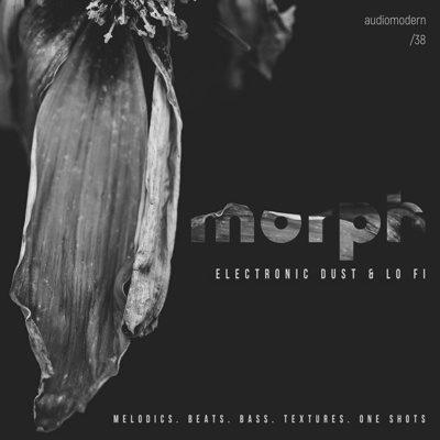Audiomodern - Morph Sample Pack