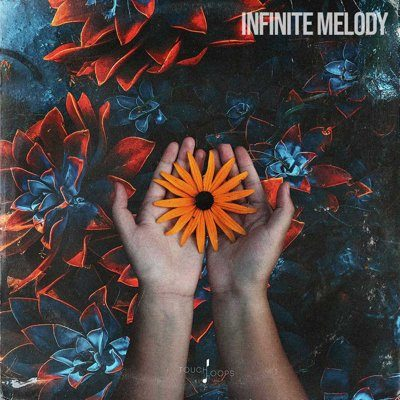 Infinite Melody Ethnic Instruments Loops Samples