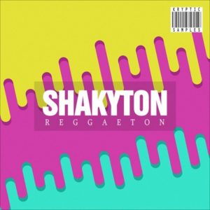 Kryptic Samples - Shakyton Reggaeton Loops