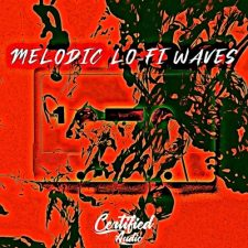 Certified Audio - Melodic Lo-Fi Waves