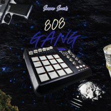 Smemo Sounds - 808 Gang - 808 Beats Kits